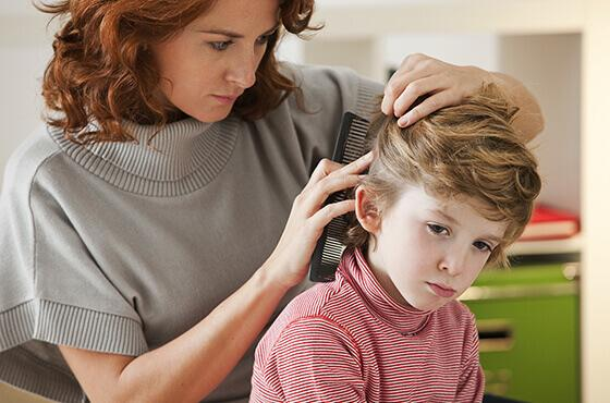 Lice: everything you need to know to get rid of them